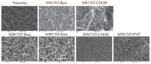 Comparison of nanotube-protein corona composition in cell culture media.